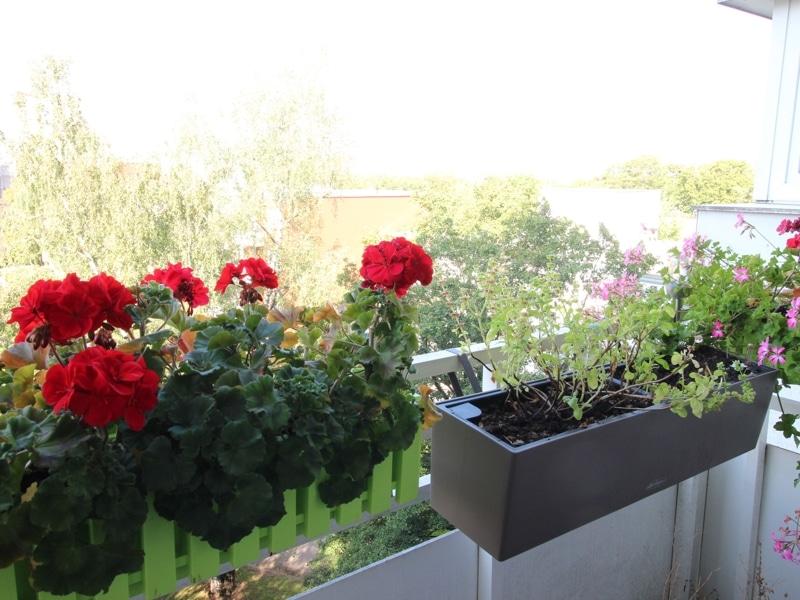Helle 2 Zimmer Wohnung mit sehr gutem Grundriss und Südwestloggia in Ottobrunn - Balkon
