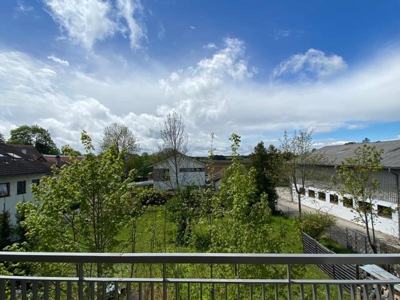Erstbezug: Nach Westen ausgerichtete ruhige 4 Zimmerwohnung mit 2 Bädern und großem Balkon - Ausblick Balkon